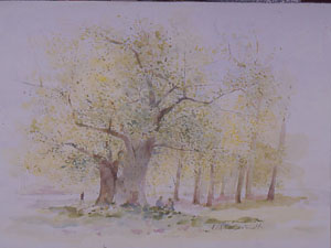 Peinture à l'huilme d'un bosquet