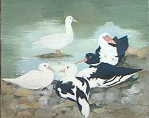 Peinture à l'huile de 5 canards