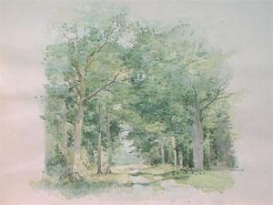 Chemin en forêt Clairmarais en aquarelle
