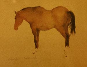 Cheval en aquarelle