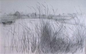 Dessin du marais de Clairmarais