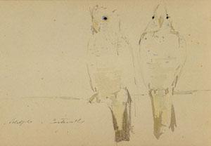Deux perroquets en aquarelle